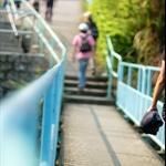 龍躍徑 Leaping Dragon Walk