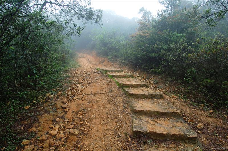 向北沿白石橋徑上大路 Pak Shek Kiu Trail