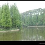 天河公园DSC_0108.jpg