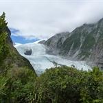 franz joseph glacier (90).JPG