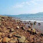 20111023 海下至大灘村 (大灘郊遊徑) Hoi Ha to Tai Tan Village