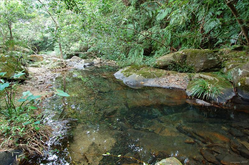 淡水河溪生境
