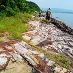 20130915  綑遊馬屎洲賞地質 Ma Shi Chau Special Area