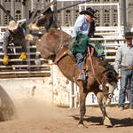 Cave Creek Rodeo 4-1-12 148.jpg