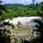 TALA part 23,Manuel Antonio