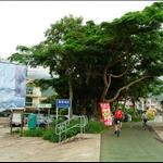 散頭角村起步 Start at San Tau Kok Village