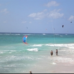 http://barbados.org/barbados_active_vacations.php