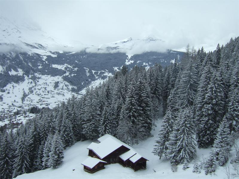 From a Gondala to the First Ski Area above Grindlewald