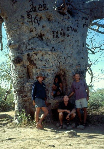 BOAB PRISON TREE, DERBY, THE KIMBERLEY, WA