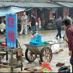 大布鎮 Dabu Town