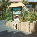 Polynesian Resort - 1991