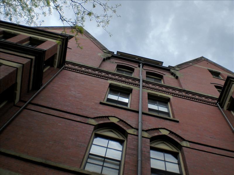 harvard gebouw