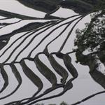 China 093.jpg