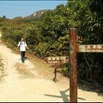 DSC_0035 「雷打石山」及「花苗山」之間的三叉山坳有指示牌往榕樹澳.jpg