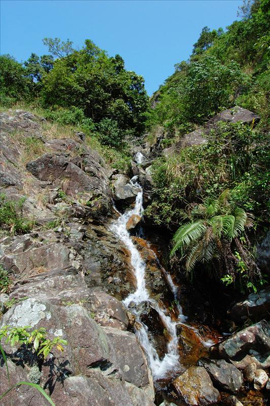 大圓石澗第三段上源Tai Yuen Stream Section 3