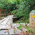 到達新娘橋 往涌尾方向上行