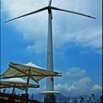 DSC_5388 大風車.jpg