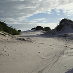 Ilha de Algodoal, img4