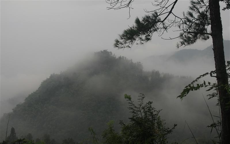 QuZhou, JiangLang Mountain, ZheJiang, China