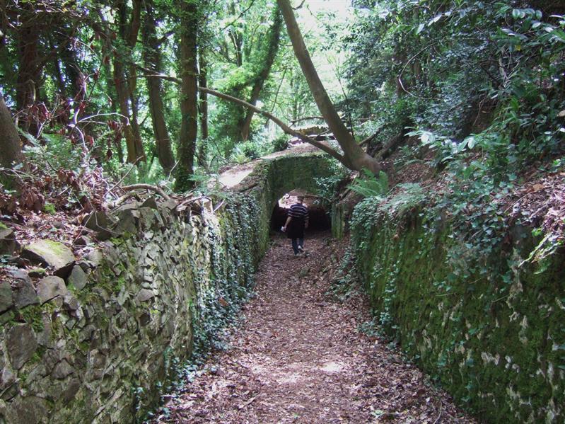 Walk from Porlock Weir to Culbone