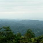 頭嵙山 (101).JPG