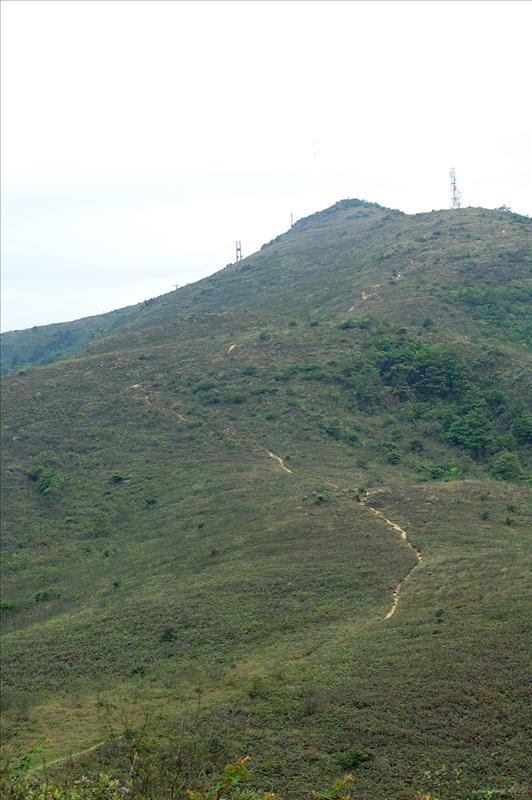 上石屋山的山徑清晰可見