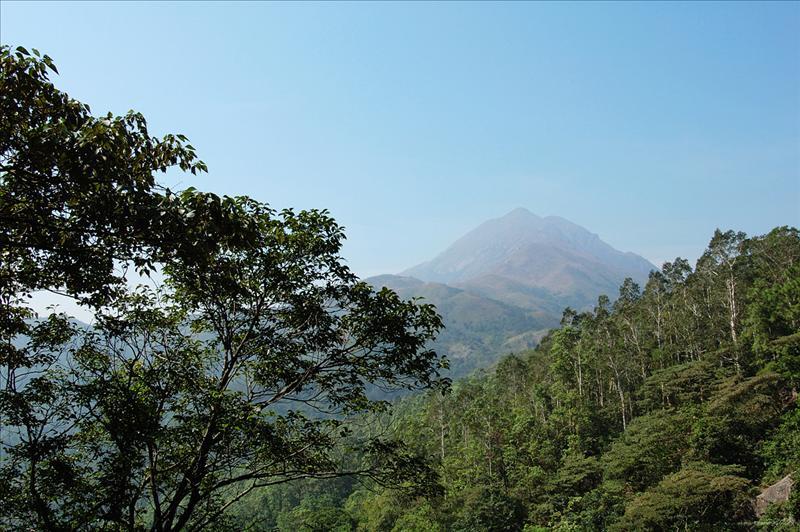遠眺鳳凰山 Lantau Peak