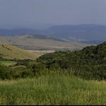 bulgarian wilcamp2.jpg