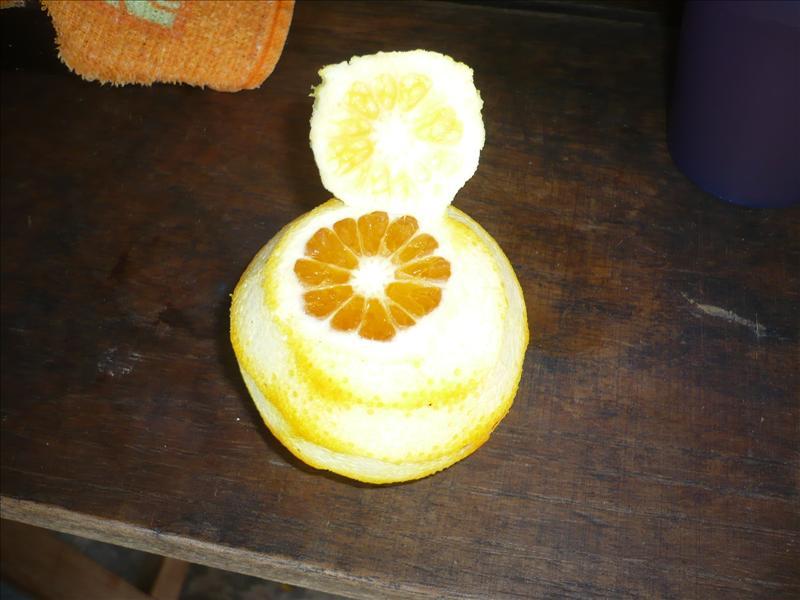 TOMAR naranja (trinken - inni)