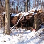 Old AT Shelter, Deans Gap