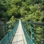 錐麓吊橋 (20).JPG