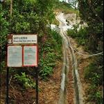 DSC8073 沿中峽亭旁引水道爬上金馬倫山東脊.jpg