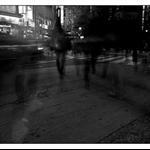 20091228-IMG_8963_1.jpg