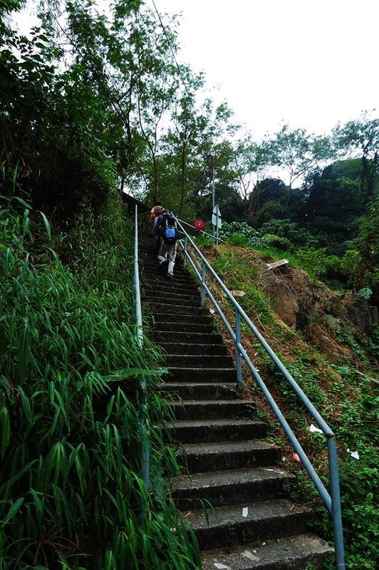 桂地新村上山