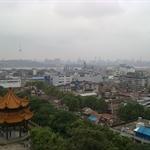 vue de la pagode