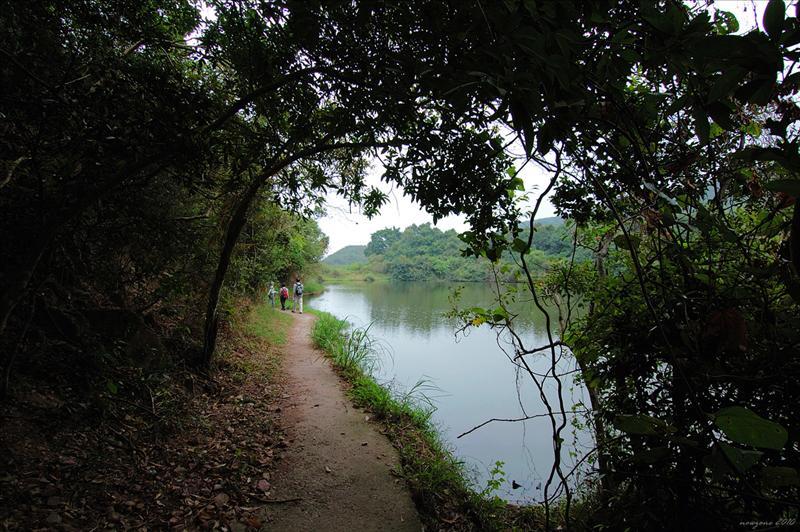 經紅石門村魚塘邊小路