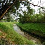 麻笏河 Ma Wat River