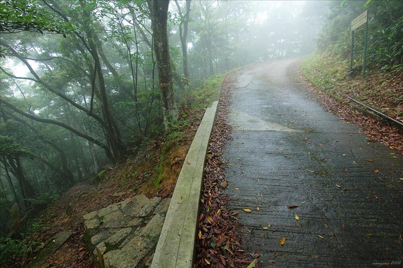 林徑盡頭接回城門林道大城石澗段