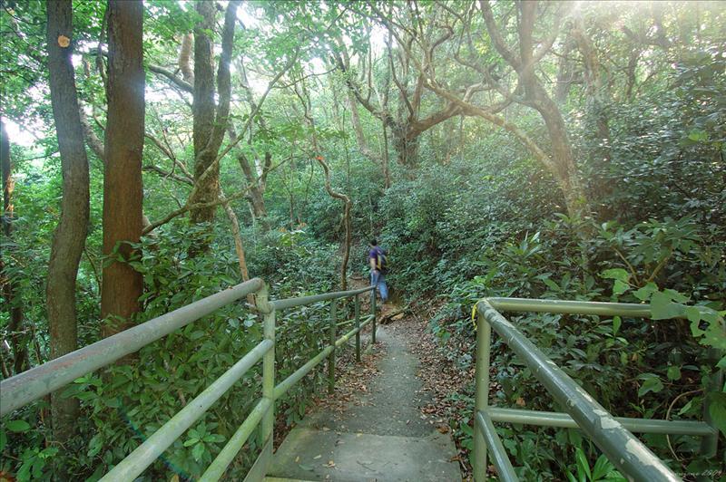 Ma Tong Au 馬塘坳