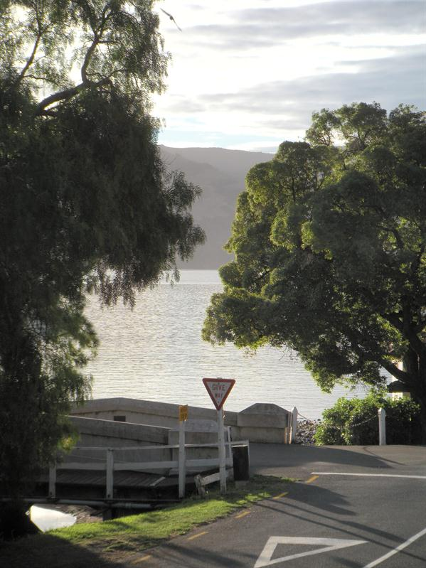 The view from the back door of our accommodation in Akaroa