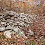 10-29-2010 036.jpg