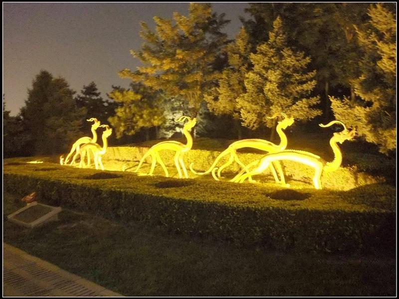 在陝西歷史博物館有看到的金龍擺飾,放大版