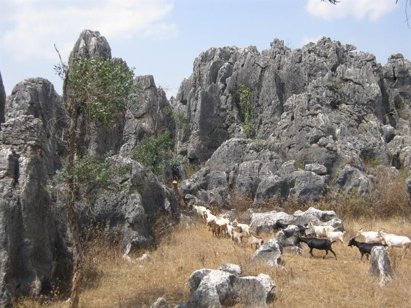 The stone forest in Shilin area