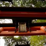the Fushimi-inari