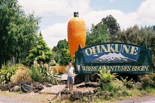 The Big Carrot, Oakune