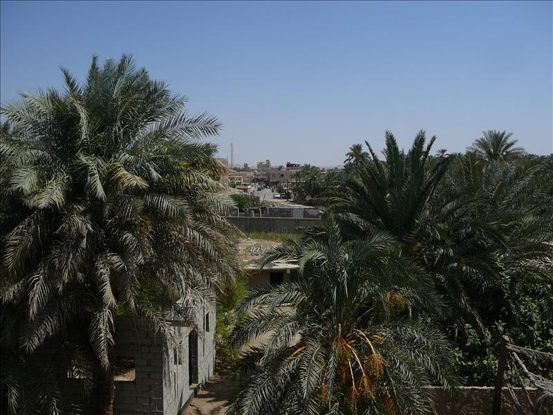 Siwa - uitzicht Cleopatra Hotel 2