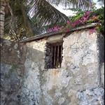 Iron Bars set in thick stone: A secure shed under a bougainvillea roof. Perhaps a pantry? - Not so - the house is a historic property protected by the national trust, the bars where their to hold slaves. It was  slave holding area.