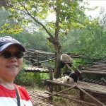 Chengdu-Panda Base