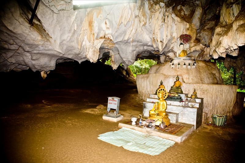 Buddha Inside Monkey Cave