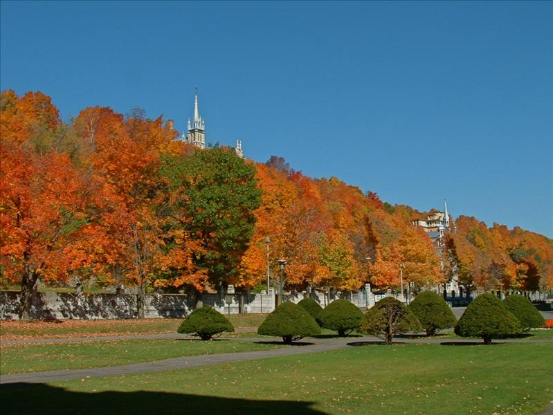 Fall colors,grounds of St.Anne De Beaupre,church